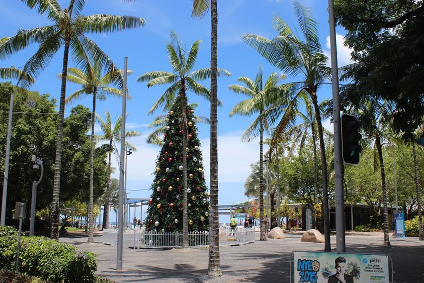 Cairns Reise Fazit