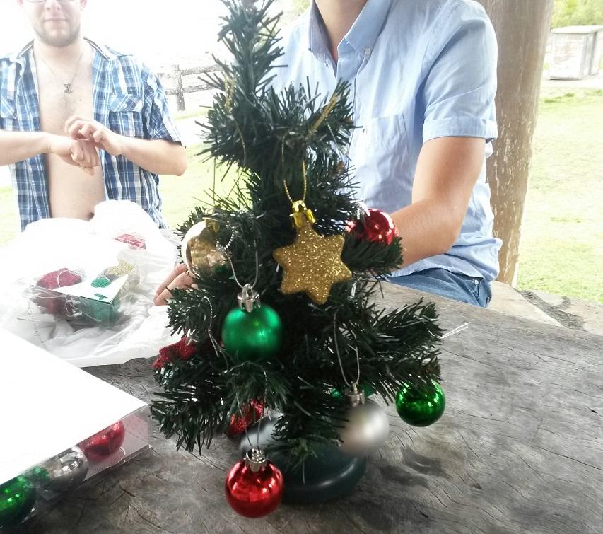So sah ein Weihnachtsbaum in Australien aus